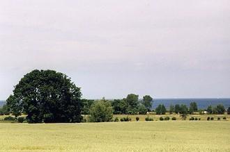 buggered Grevesmühlen(Mecklenburg-Vorp.)