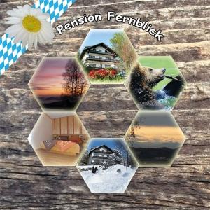 Landhaus Pension Fernblick, am Nationalpark / Baumwipfelpfad