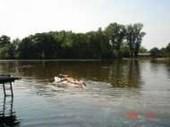 Ferienwohnungen Kropp am See im schönen Blockland in Bremen
