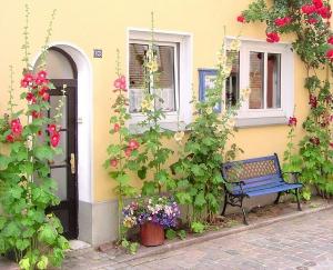 ***1A Ferienwohnung  Atelier Sabine Bovensiepen Eckernförde Altstadt Hafen & Strand