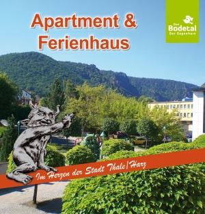 Standart Apartement mit Blick zum Hexentanzplatz im 3.Stock