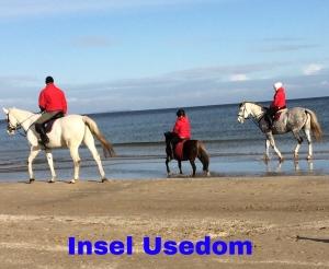 Insel Usedom-entspannen Am Küstenwald, Ferienwohnung