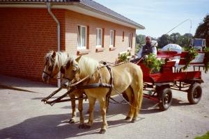 Ferienhof Roge
