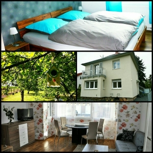 Ferienwohnungen, Hof, Garten, Offenheim, Rheinhessen, 55232